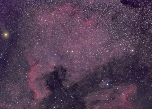 NGC7000 Image du mois